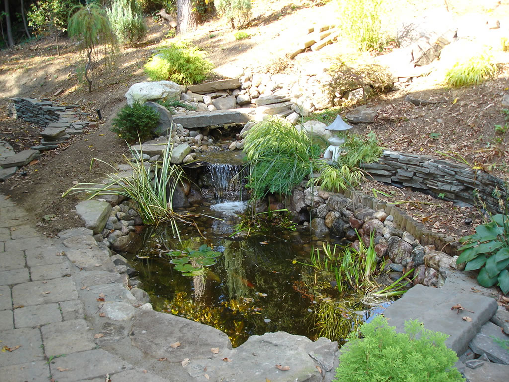 Pond water features masonworkz landscapes for Pond water features