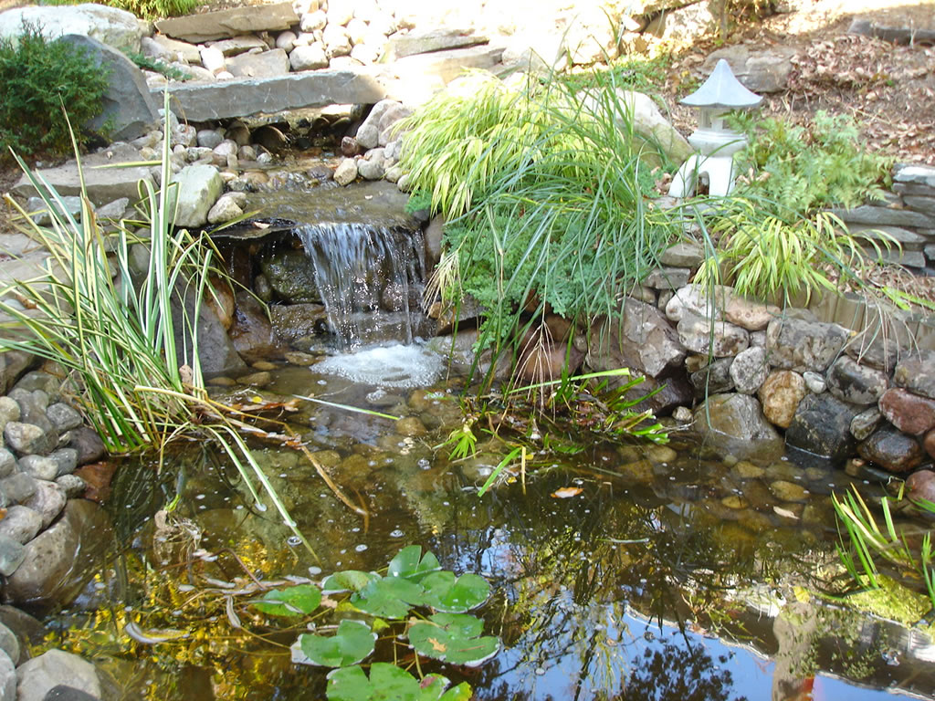 Pond water features masonworkz landscapes for The koy pond